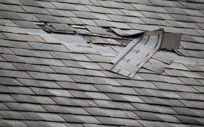 5 Warning Signs You May Need Roof Repairs